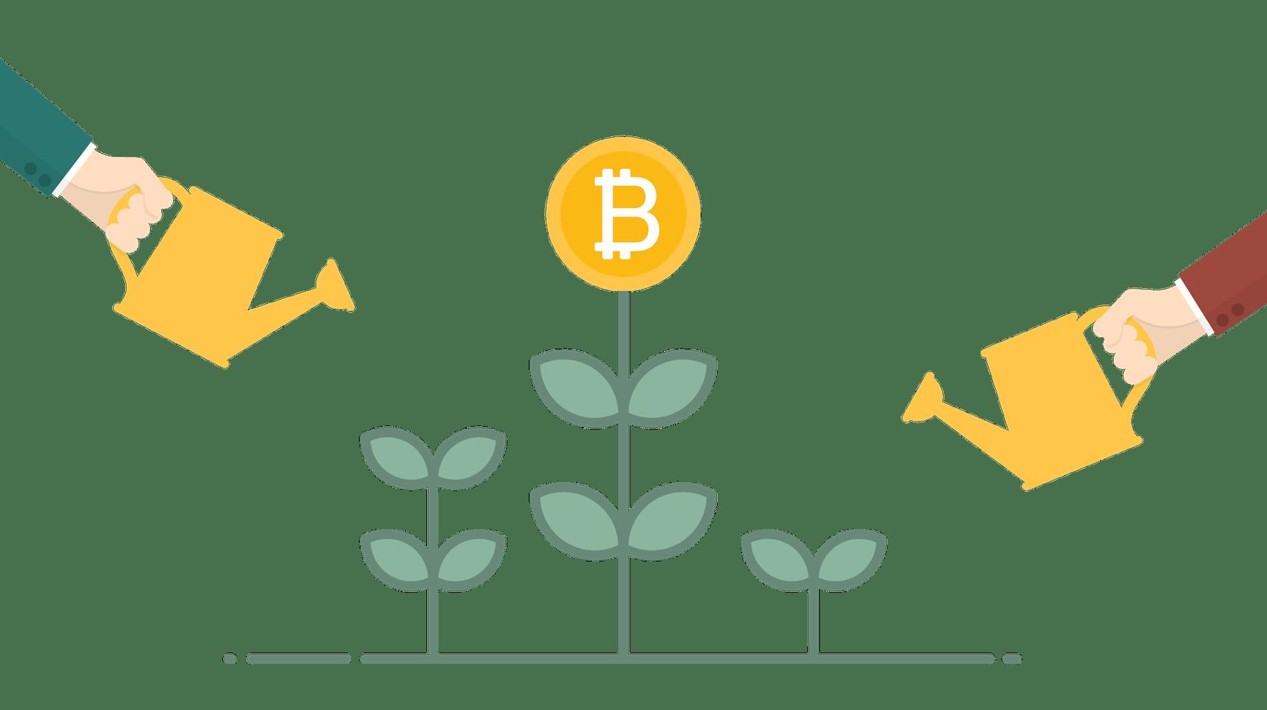 bitcoin växer
